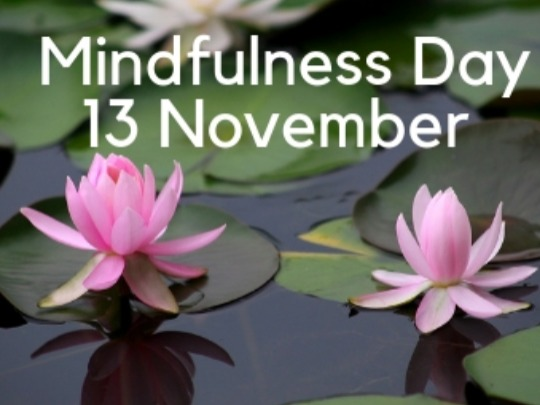 Join us for a fully catered, full day mindfulness workshop in the peaceful surrounds of Bimbadeen.